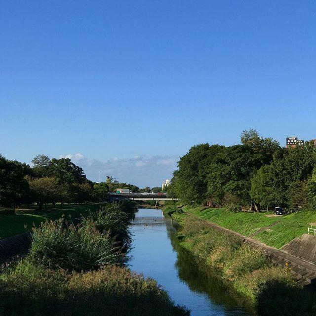 雲一つない青空!な松山市石手川。気持ちが良い月曜日の始まり。#石手川 #松山市 #青空 #川 #空 #朝 #月曜日