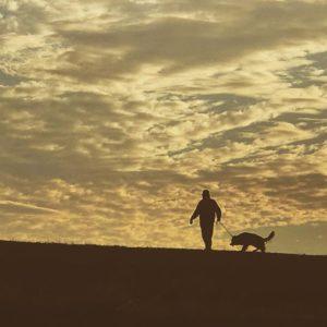 夕焼け色の秋の空。河原を散歩、おっさんと犬。#夕焼け #散歩 #犬 #おっさん #河原 #シルエット