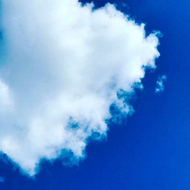 今日のお昼の青空。気持ちいい青っ!爽やかな青っ!