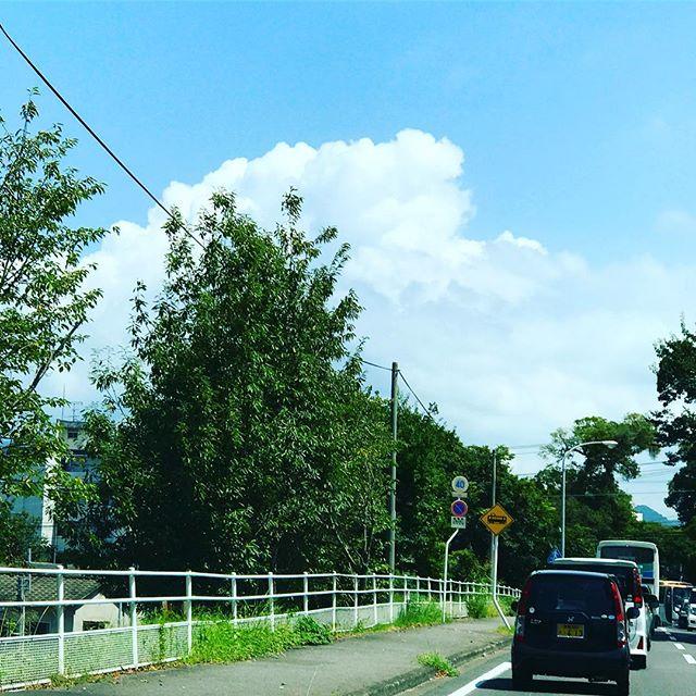 入道雲、モクモク。まだまだ夏は、終わらないっっっ!のか。ふう。
