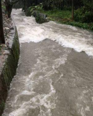 自宅近くの用水路、すさまじい流れになってる。氾濫寸前で道路も冠水しそう。台風、こわいわぁ。