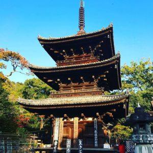 伊佐爾波神社初詣からの、石手寺参拝。こちらも、なかなかの人出。これでひとまずお詣り完了で、ひと段落。