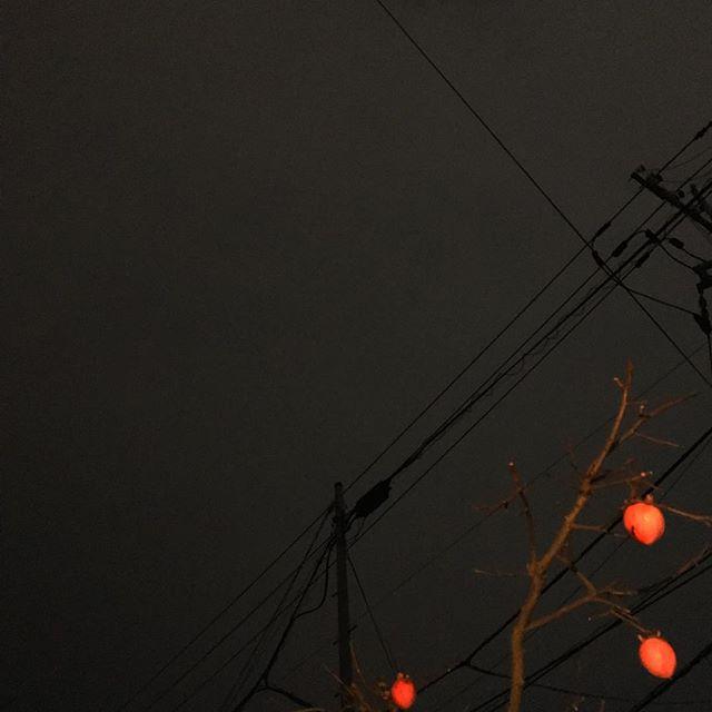 スーパーブルーブラッドムーン?皆既月食?残念ながら見えませーん。西の方から雲が押し寄せてきてまーす。帰宅時にはくっきりはっきり満月見えたのに、ざーんねん。な、松山市です。