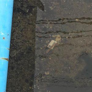 とある水路の水の底にに運転免許証が沈んで方だけど、これって警察に連絡したほうがいいのかな?水に入って取るのはムリなんだよぉ。