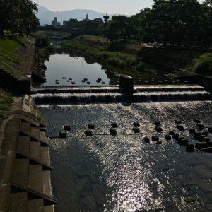 朝日に輝く石手川。おはようございます。今日も熱くなりそうだなぁ。