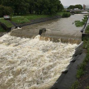 石手川、大雨でかなり増水中!きをつけて!