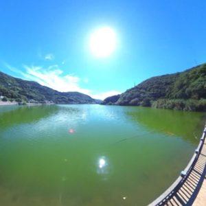 佐田岬の亀ヶ池。いい天気だ…。良すぎて暑いww