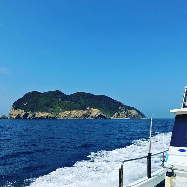 御五神島無人島キャンプのお手伝い、終了っ!ドローン飛ばして水中撮影して、イノシシの夜景…は寝てしもたのでできなかったけど、元気でたくましい子どもたちを見れました。元気、いただきましたっ!