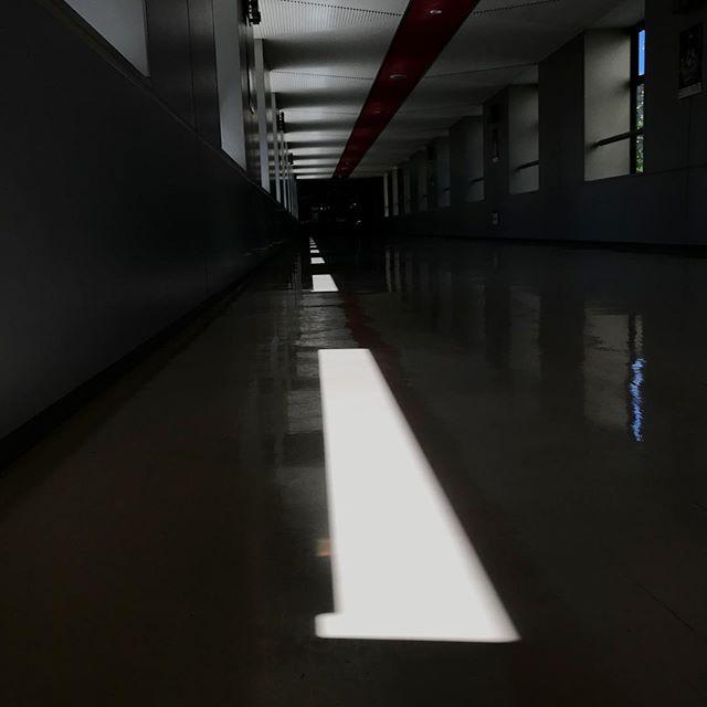 夜の廊下のようだけど、昼間です。