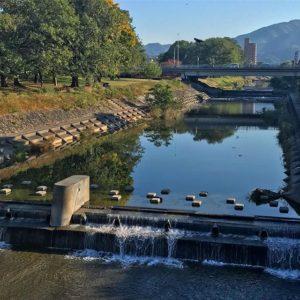 穏やかな秋の朝の石手川。