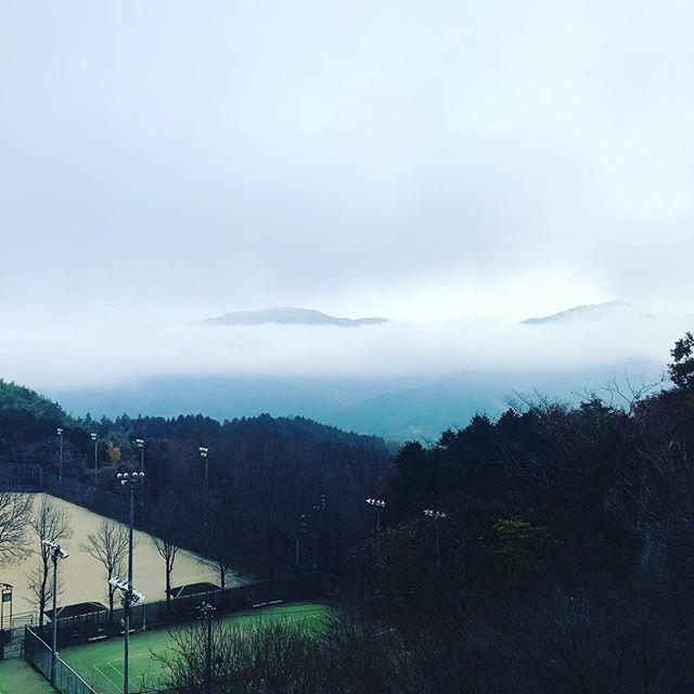 大洲名物、朝もや。辺り一面霧まみれ。これはこれで、なかなかに幻想的なんだよね。
