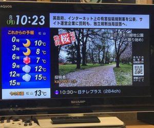 今朝、出勤途中に撮影した石手川公園の桜の写真、朝のうちに投稿したらまたしても、愛媛CATVの桜だよりでオンエアされましたー!これ、なかなかクセになるなwwwでもこのオンエアされた写真だけでいいので、愛媛CATVのサイトで公開してくれんかな?うっかりオンエア見逃してしまってガッカリになるかもだし、ネ。