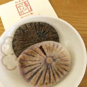 徳島名物、和田乃屋さんの、滝のやき餅、久しぶりに食べた!どことなく懐かしい素朴な味わい。イオンモール徳島に出店してたんですね。美味しゅうございました。
