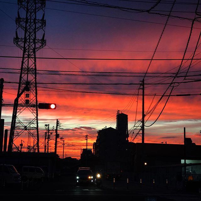 ゾクゾク、ゾワソワするような夕焼けでした。