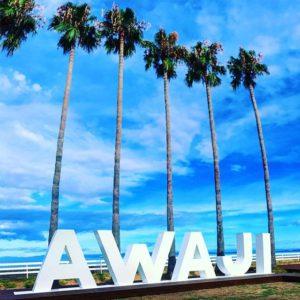 イエーイ!アワジ!AWAJI!アローハ!(違っ#アワジ#awaji #映えスポット?#ヤシの木 #パームツリー #ハワイじゃないよ淡路島だよ
