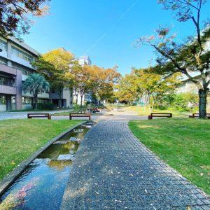 今日は(明日も)丸一日お勉強。愛媛大学でAIについて学びますー。アタマフル回転させてガンバロ。