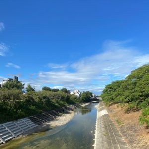 今朝の石手川。いつのまにか、あれだけやかましく響いていたセミの鳴き声も途絶え、空は高くなりつつある。もうすっかり秋なんですねぇ。まだ熱いけど!
