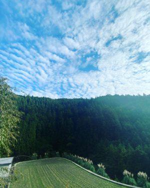 内子から小田抜けで久万高原町に向かう山道の途中で道路工事中に遭遇。時間帯通行止めのため、30分待機ですwwキレイな山の景色を見てのんびり待ちましょ。