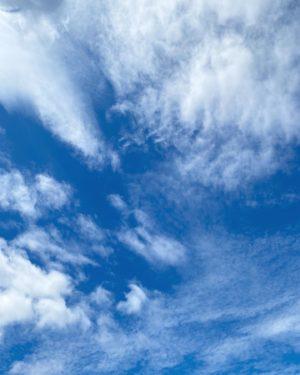青空!雲が高くなってすっかり秋の空。明け方の激しい雨が嘘のような昼間の空。明日もいい天気になぁれ。